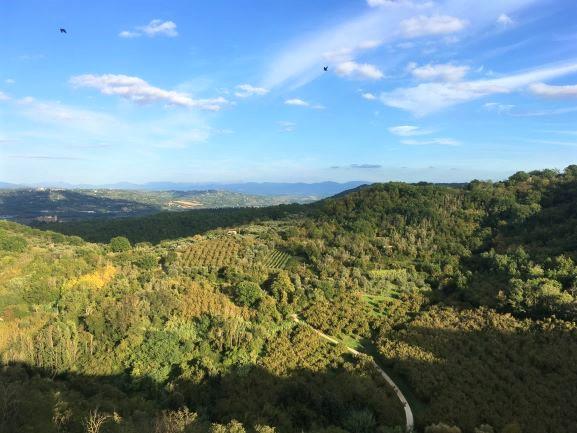 Bomarzo, la vista dal borgo