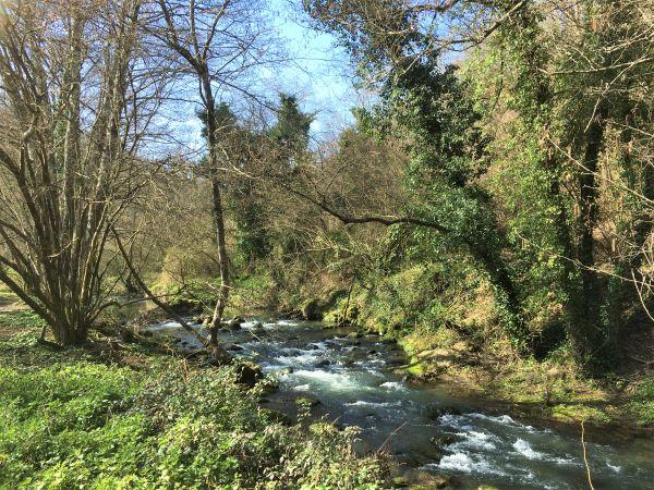 Valle del Treja, le rapide del fiume
