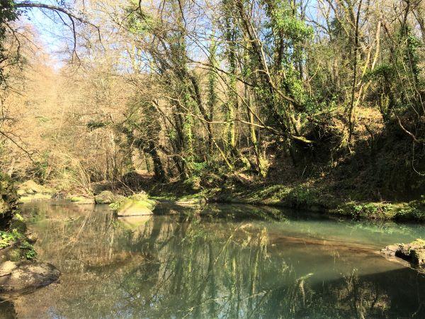 Valle del Treja, il fiume lungo il sentiero 002