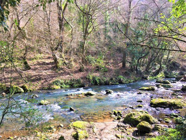 Valle del Treja, camminando lungo il fiume, sentiero 002
