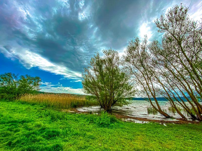 Lago di Vico alberi sommersi dall'acqua