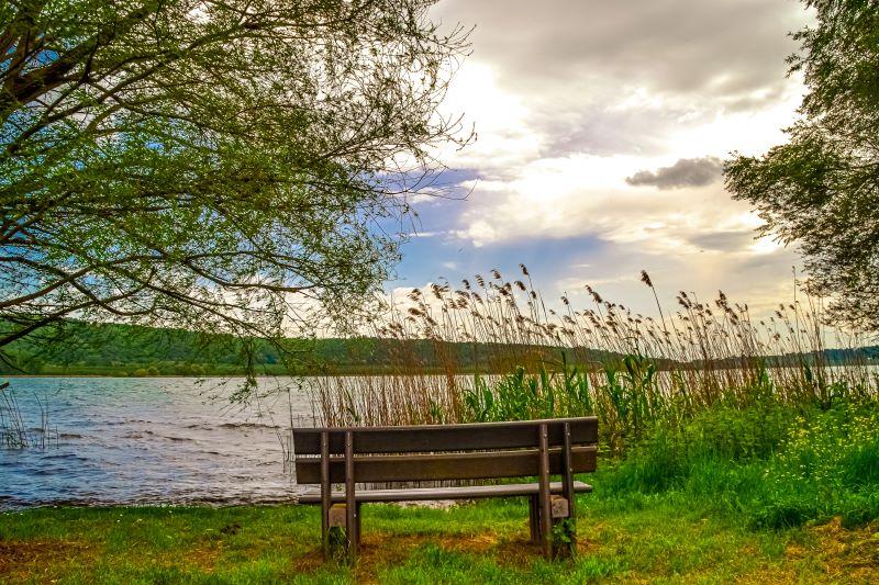 Lago di Vico una panchina lungo il sentiero Le Prove