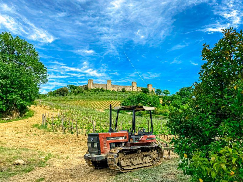 Monteriggioni il borgo fortificato visto dalla via Francigena